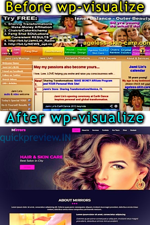 wp visualize review