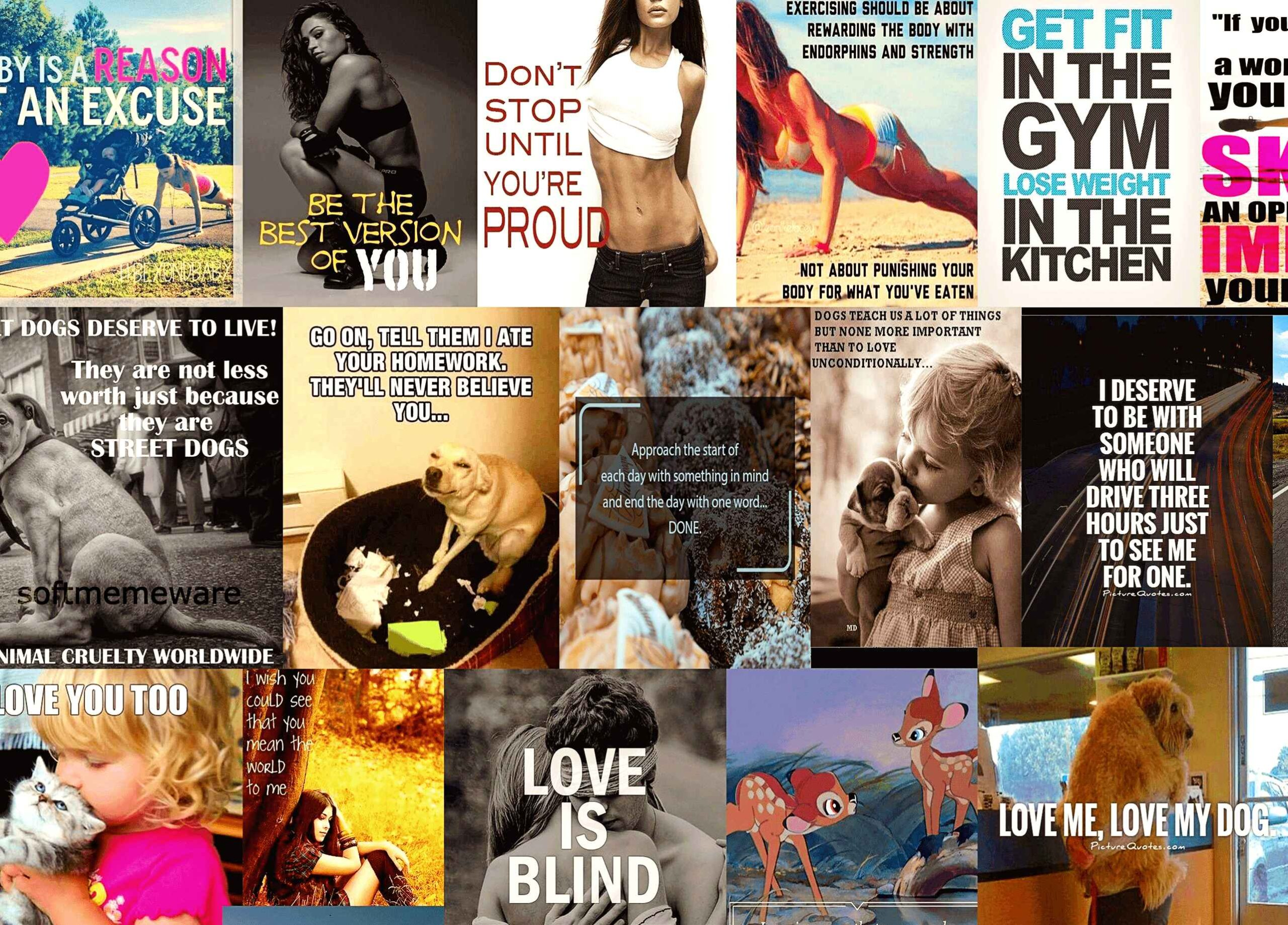 5000+ Viral Quote Images Pack thumbnail